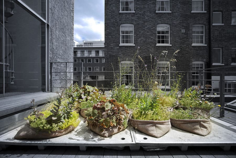 Digitale Ausstellungseröffnung: Einfach Grün – Greening the City