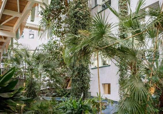 DAMobil Grün vor Ort und in Echt — Exkursionen im Raum Frankfurt